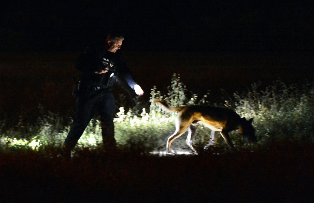 . A police officer leads his dog through an empty field as San Bernardino police investigate the scene of a quadruple shooting in the 2900 block of Mountain Ave in San Bernardino, CA, Friday, March 28, 2014. (Photo by Jennifer Cappuccio Maher/Inland Valley Daily Bulletin)