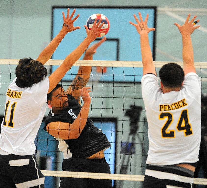 . CARSON - 04/09/2013  (Photo: Scott Varley, Los Angeles Newspaper Group)  San Pedro vs Carson boys volleyball. Carson won 3-0. Carson\'s Pu\'e Togia hits into the block of Jacob Branch, left, and J.J. Peacock.