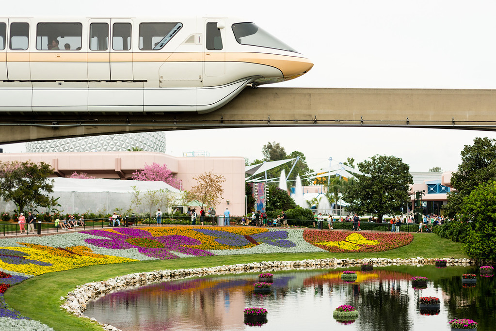 Pretty flowers under the monorail at Epcot