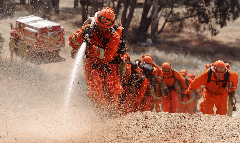 Description of . (4-23-13)--FONTANA-METRO--Cal Fire inmates from   Prado Conservation Camps works on their hose lay during exercises training Tuesday April 23, 2013  off Lytle Creek Road in Fontana. Cal Fire inmate fire crews are participating in two days of fire preparedness exercises on timed hike, fire shelter deployment, progressive hose lay and hand line construction. LaFonzo Carter/Staff Photographer