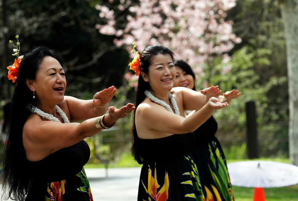Description of . Hawaiian Hula dancers, during the Cherry Blossom Festival, at Schabarum Park in Rowland Heights, Saturday, March 9, 2013. The Cherry Blossom Festival included Japanese and Korean drumming, Classical Chinese and Hawaiian Hula dancing, as well as Mexican and Dragon dancing. (Correspondent Photo by James Carbone/SVCITY)