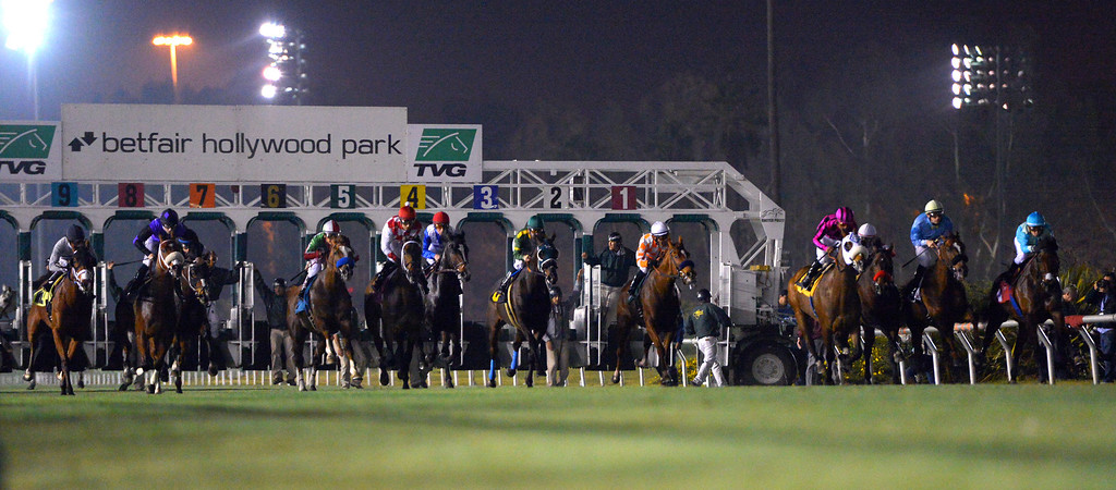 . Final day of horse racing at Hollywood Park in Inglewood, CA on Sunday, December 22, 2013. After 75 years, the famed racetrack is closing to make way for development.  Horses start the 11th and final race of the day. (Photo by Scott Varley, Daily Breeze)