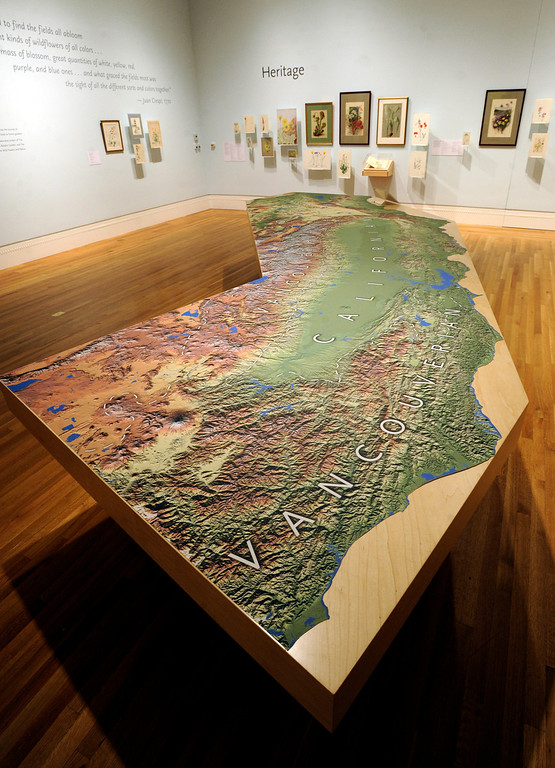 """. A giant topographical map of California is seen in te \""""Heritage\"""" secton of the gallery. \""""When they were wild,\"""" is the Huntington Library\'s new Wildflower exhibition which kicks off a month of talks, workshops and wildflower sales. San Marino, CA 3/8/2013(John McCoy/Staff Photographer)"""