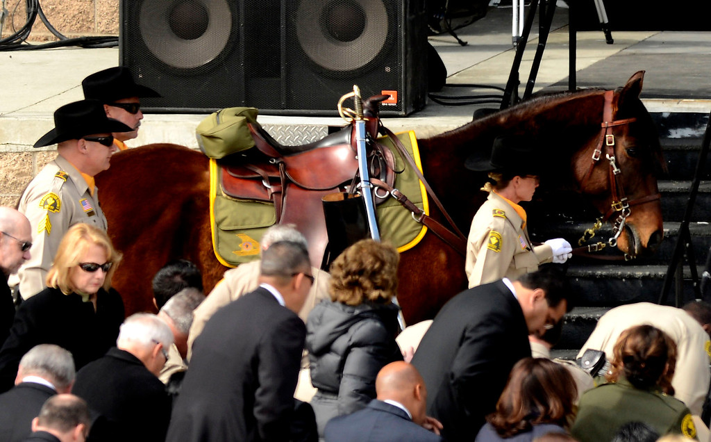 Description of . A rider-less horse is brought in during memorial services for San Bernardino County Sheriff Deputy Jeremiah MacKay at the San Manuel Amphitheater in Devore February 21, 2013.  GABRIEL LUIS ACOSTA/STAFF PHOTOGRAPHER.