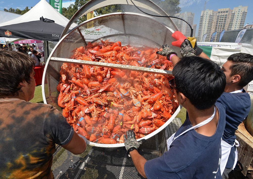 . The 17th Annual Original Lobster Festival at Rainbow Lagoon Sunday, September 08, 2013, in Long Beach.  A pot of freshly cooked lobsters are unloaded from the giant copper kettles. Photo by Steve McCrank / Daily Breeze