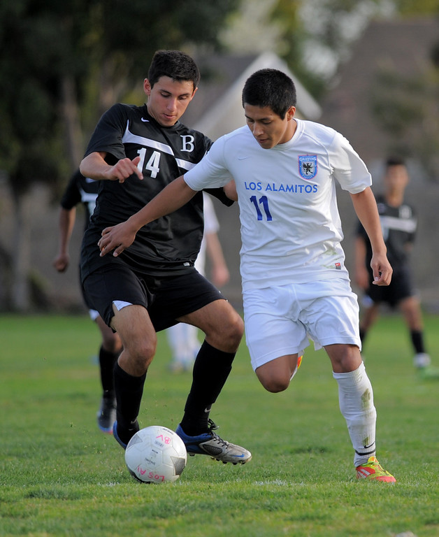 . 02-15-2012--(LANG Staff Photo by Sean Hiller)- Los Alamitos beat Buena 4-1 in the first round of the Division 1 boys soccer playoffs Friday at Laurel School in Los Alamitos. Ozvaldo Yanez (11) had to be heavily guarded by Buena defenders.