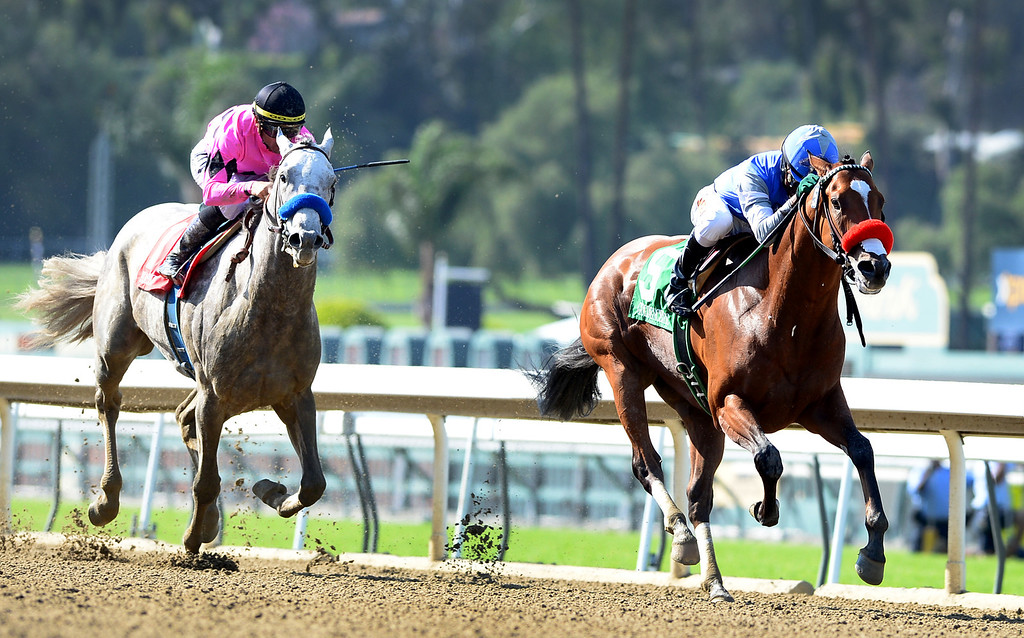 Description of . Kevin Krigger rides Goldencents as they win the Santa Anita Derby Saturday, April 6, 2013 at Santa Anita Park in Arcadia. (SGVN/Staff Photo by Sarah Reingewirtz)