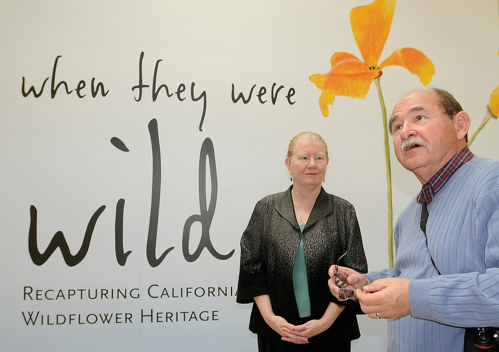 """. (l-r) Kitty Connoly, the exhibit curator and Jim Folsom, the Director of the Gardens stand in front of the exhibit. \""""When they were wild,\"""" is the Huntington Library\'s new Wildflower exhibition which kicks off a month of talks, workshops and wildflower sales. San Marino, CA 3/8/2013(John McCoy/Staff Photographer)"""