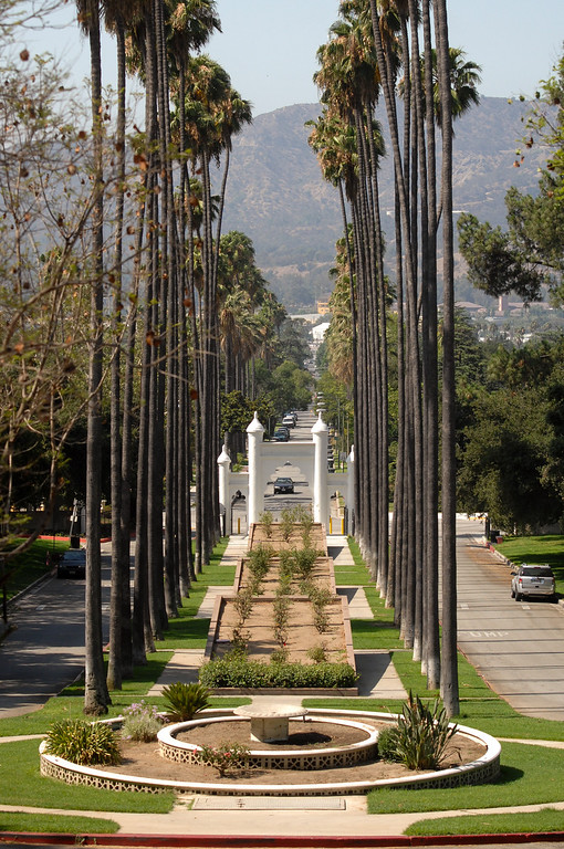 . The view from Glendale�s Brand Library & Art Center. Tuesday, July 23, 2013. (Michael Owen Baker/L.A. Daily News)