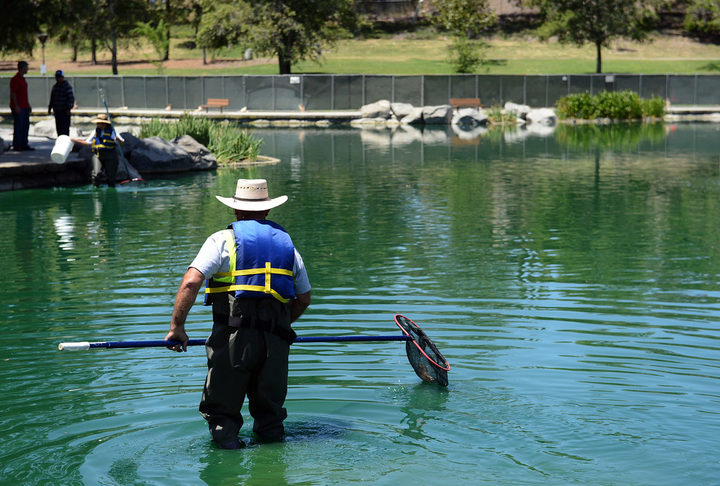 . Crews prepare to drain the lake at Red Hill Park in Rancho Cucamonga, CA, Monday, May 12, 2014. (Photo by Jennifer Cappuccio Maher/Inland Valley Daily Bulletin)