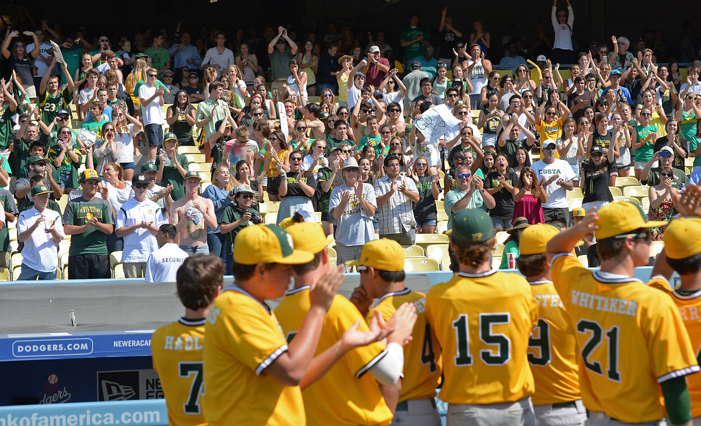 . Mira Costa fans cheer their team for making it to the final in the CIF-SS Division III championship baseball game Friday at Dodger Stadium. Serra won the title, 8-1. 20130531 Photo by Steve McCrank / Staff Photographer