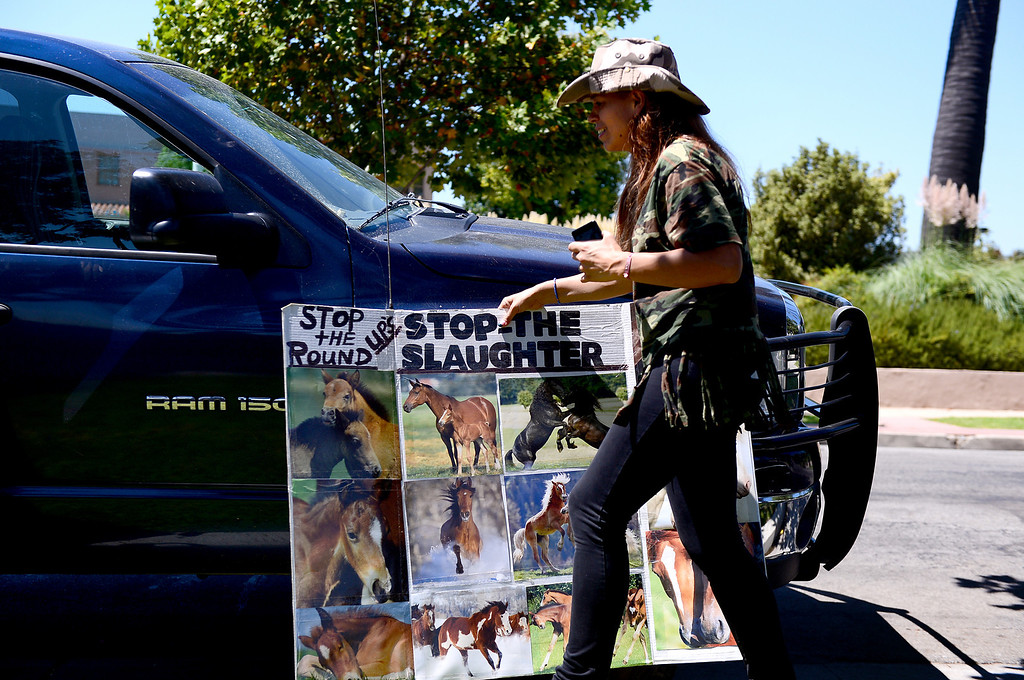 Description of . Katalina Robledo, of Quartz Hill, moves a poster as Wildlife activists gather outside the Ninth Circuit Court of Appeals in Pasadena before attending a hearing on Bureau of Land Management's round-up of wild horses Thursday, August 29, 2013.  (Photo by Sarah Reingewirtz/Pasadena Star-News)