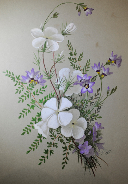""". Sophie Mitchel painted this Silver Lupine. \""""When they were wild,\"""" is the Huntington Library\'s new Wildflower exhibition which kicks off a month of talks, workshops and wildflower sales. San Marino, CA 3/8/2013(John McCoy/Staff Photographer)"""