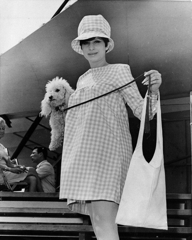 . Musical comedy star Barbra Streisand arrives with her pet poodle Sadie at Newport, R.I. on July 7, 1966.   Streisand made a one night appearance at a musical festival.    Streisand is expecting her first baby in December.  (AP Photo)