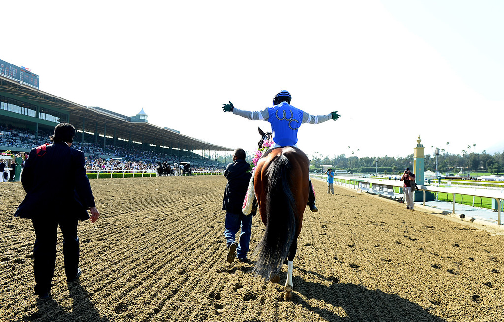Description of . Jockey Kevin Krigger celebrates Goldencents Santa Anita Derby win Saturday, April 6, 2013 at Santa Anita Park in Arcadia. Goldencents will now race in the Kentucky Derby. (SGVN/Staff Photo by Sarah Reingewirtz)