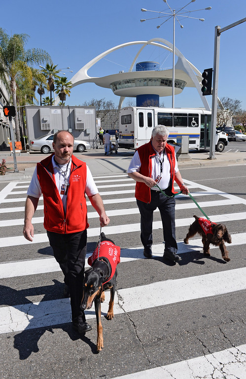 """. Marwick Kane with \""""Jackie\"""" left, and Rick Pocrass with \""""CC\"""". New program at LAX called PUP (Pets Unstressing People) uses certified dogs to walk the terminals with their volunteer owners to greet passengers and help ease the tensions of modern airline traveling.   Photo by Brad Graverson 4-11-13"""