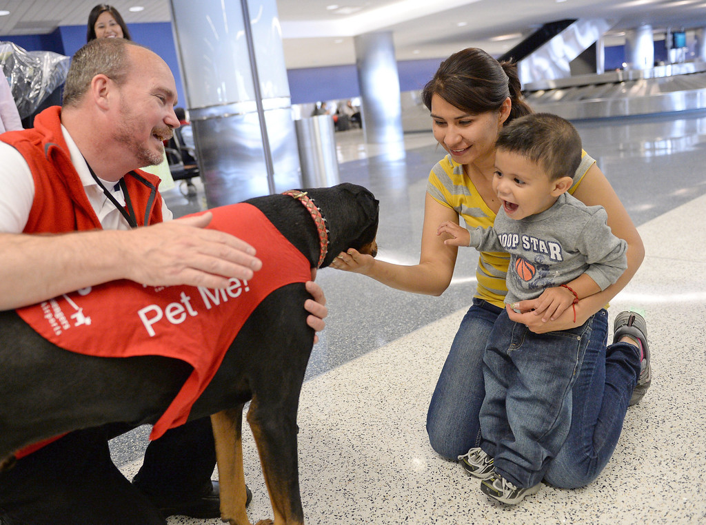 """. Marwick Kane and \""""Jackie\"""" meet Gabriella Ortiz and son Osvaldo Ortiz. New program at LAX called PUP (Pets Unstressing People) uses certified dogs to walk the terminals with their volunteer owners to greet passengers and help ease the tensions of modern airline traveling.   Photo by Brad Graverson 4-11-13"""