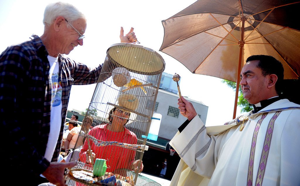 Description of . Father Paul Sustayta, right, blesses canaries Elvis and Evira with their owner Don Bima, left, during the traditional Blessing of the Animals at St Andrew Church School on Saturday, March 30, 2013 in Pasadena, Calif.  (Keith Birmingham Pasadena Star-News)