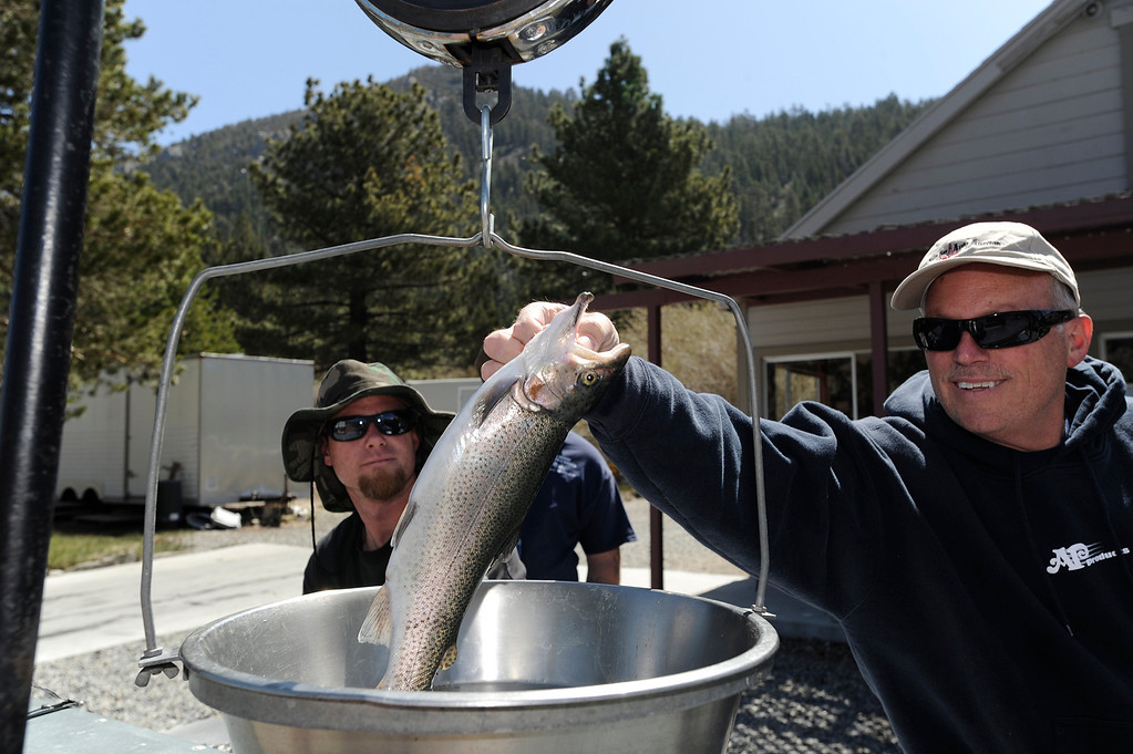 . (l-r) Ryan Green of Palmdale keeps an eye on Gary Slayton, also of Palmdale, as he weighs his fish at June Lake. The rainbow was just under 2 pounds on oopening day of Trout Fishing Season in the Eastern Sierra. June Lake, CA 4/27/2013(John McCoy/Staff Photographer)