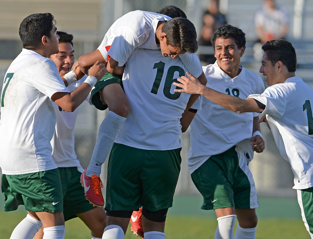 . Narbonne\'s Jaime Enriquez (8) is picked-up by teammates as they celebrate his goal on San Pedro in a Marine League boys soccer game Wednesday, February 12, 2014, Harbor City, CA.  Narbonne won 2-0 and seals the league title. Photo by Steve McCrank/Daily Breeze