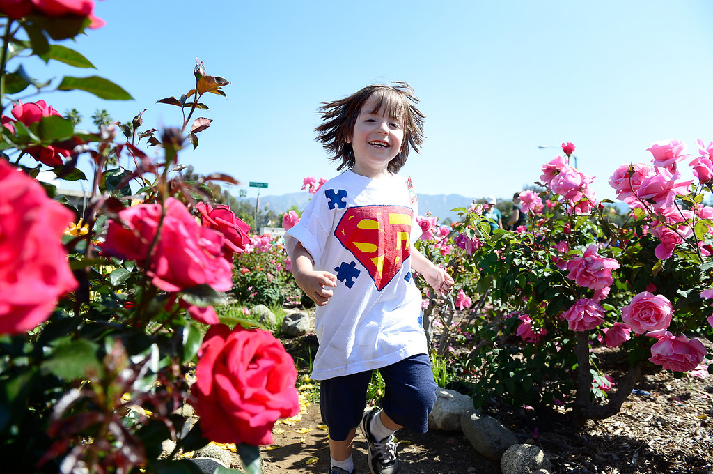 Description of . Frankie Meyer, 5, runs through the Rose Bowl's rose garden in Pasadena before his team walks in the 11th annual Los Angeles Walk Now for Autism Speaks Saturday April 20, 2013. (SGVN/Staff Photo by Sarah Reingewirtz)