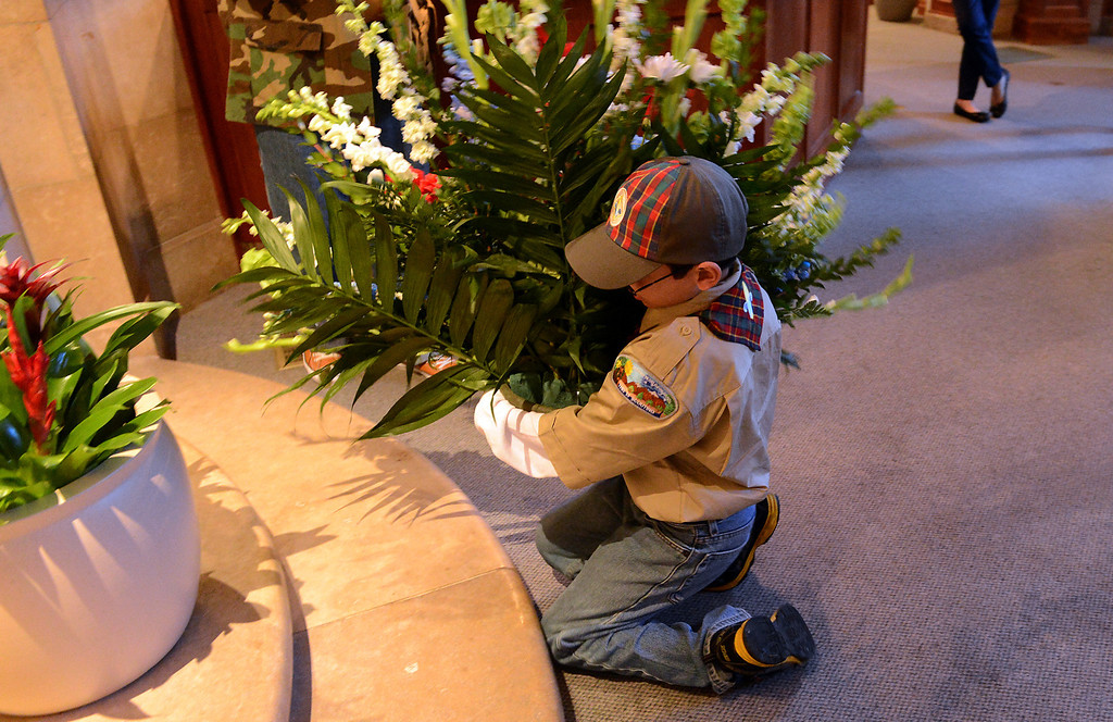 . Boy Scout Troop 128 member Eric Castaneda, 9, of Highland, places the flowers inside the Lincoln Memorial Shrine during the 75th annual Lincoln Pilgrimage in Redlands, CA., Saturday, February 8, 2014. (Photo by Jennifer Cappuccio Maher/Inland Valley Daily Bulletin)