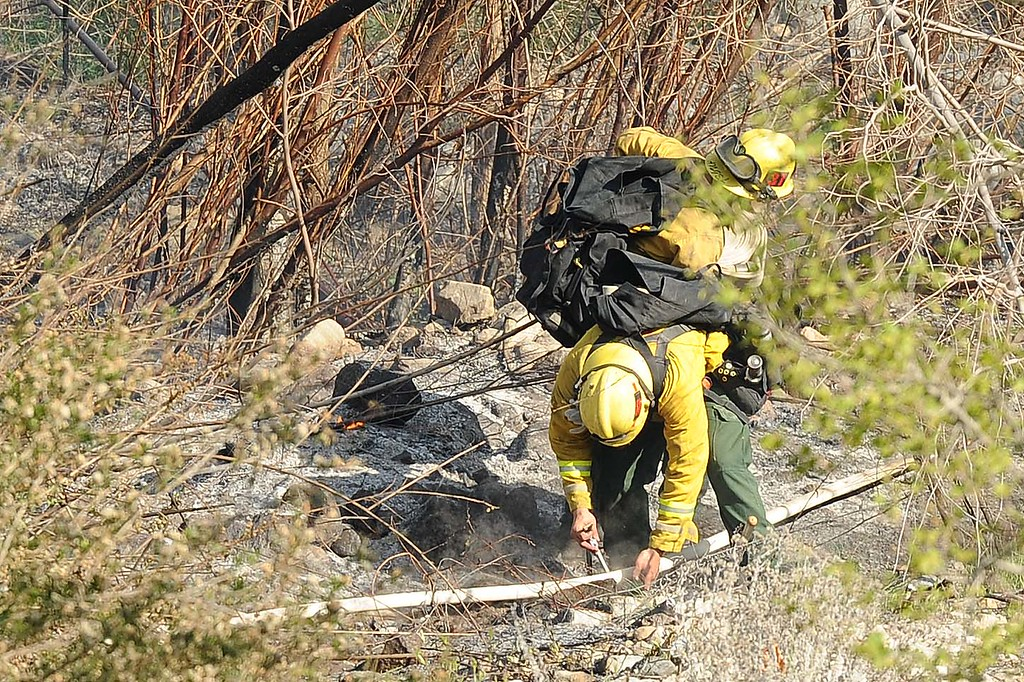 . Firefighters have five small brush fires under control Thursday afternoon in Waterman Canyon. The burn area for the five fires is about one acre, according to San Bernardino National Forest personnel. Firefighters are still managing the scene. A suspected arsonist, reportedly wearing a blue polo shirt and jeans, was seen running up the mountainside near Highway 18 and Old Waterman Canyon Road. San Bernardino police are searching for the suspect with the help of Sheriff\'s helicopter, 40-King. This is the same area where the 2003 Old Fire was set.