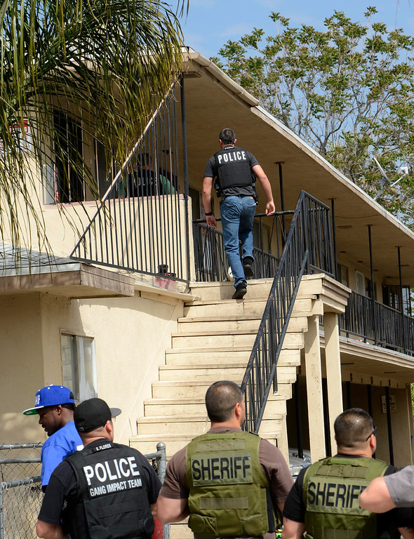 Description of . SMASH unit officers conduct a sweep at an apartment complex along the 1100 block Mayfield Drive in San Bernardino April 4, 2013.  GABRIEL LUIS ACOSTA/STAFF PHOTOGRAPHER.