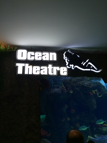 The Shore Oceanarium