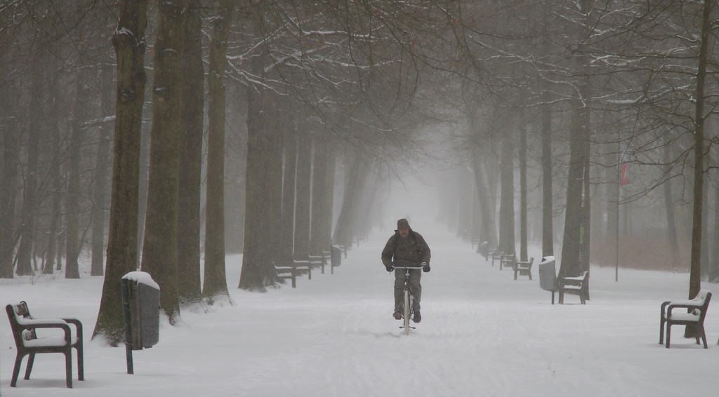 . A man rides his bicycle down a snowy path in a park in Wilrijk, Belgium on Tuesday, March 12, 2013. An overnight snowfall on Monday evening snarled rush hour traffic on Tuesday morning. (AP Photo/Virginia Mayo)