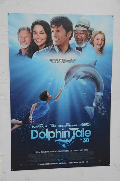 Chad Soriano PhotoBlog: Winter's Dolphin Tale Experience at ...