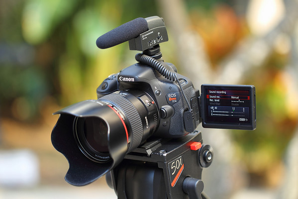 Canon Rebel T3i Video Test: Canon Rebel (EOS 200D-800D) Talk
