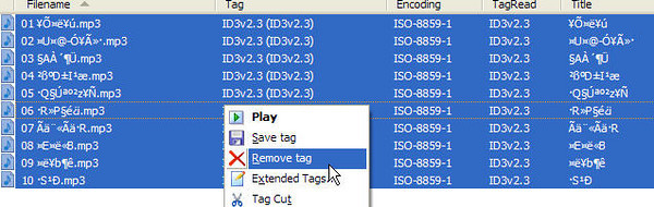 Clean up MP3 tags with DELETE