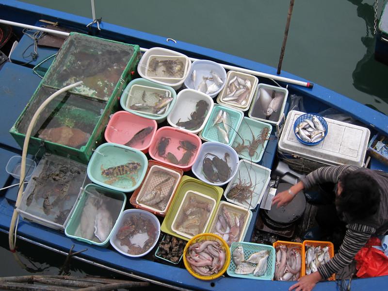 Fisherman selling seafood at Sai Kung Ferry Pier Waterfront